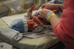 Arrival of Teller and Nixon May (emily @ go haus go) Tags: babies story arrival birthstory twinboys