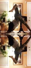a_T.P.A.M.S. (ॐbhx6ॐ) Tags: dog yoga mirror three down split tri legged adho mukha pada svanasana yogaeverydamnday tutbutt werkshoptut