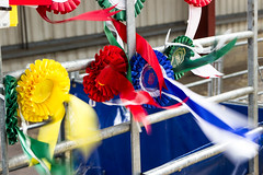 Rosettes in the wind (NeilSkinner01) Tags: show colours wind country farming awards prizes rosette rosettes nottinghamshire countyshow
