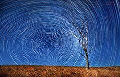RGB (Jay Daley) Tags: sky night stars nikon australia nsw startrail d810 zeiss15mm