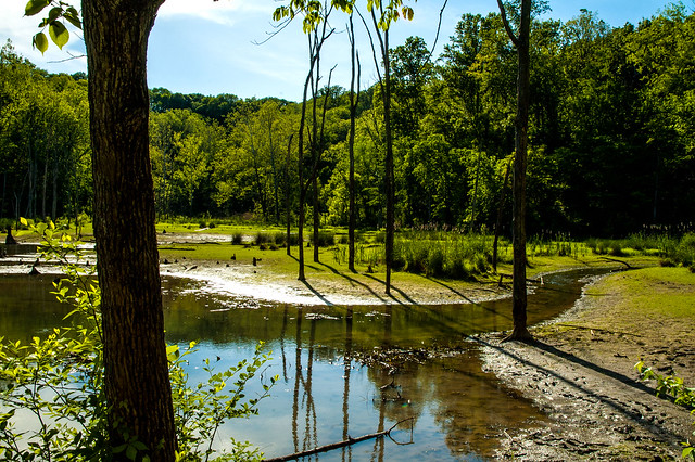 Leonard Springs Nature Park - May 18, 2015