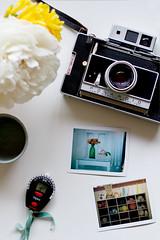 Polaroid (Annetta Bosakova) Tags: flowers polaroid lightmeter landcamera filmphotography filmsnotdead
