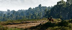 The Witcher (Stein3x) Tags: 3 the witcher reshade
