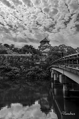 JATI201510_667R-BYN_FLK (Valentin Andres) Tags: bw blackwhite blancoynegro byn castillo japan japn osaka castle