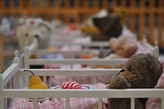 fence around a teddy-hospital (nirak68) Tags: 295366 spielzeug toys krank verletzt teddy luvcenter 2016ckarinslinsede betten schleswigholsteinkreisfreie deutschland schleswigholsteinkreisfreiehansestadtlbeck ger lbeck brenklinik krankenhaus