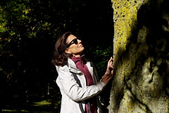 The big Beech (Franco Vannini) Tags: madonnadelfaggio tuscany toscana beech oak faggio quercia autunno goldenretrievers