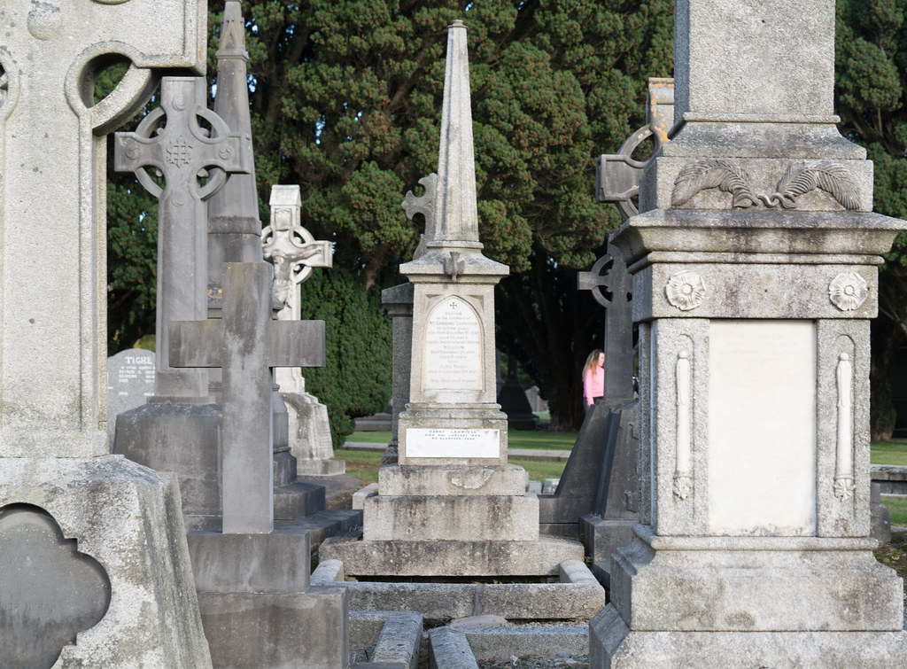 A QUICK VISIT TO GLASNEVIN CEMETERY[SONY F2.8 70-200 GM LENS]-122083
