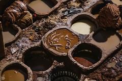 Hell (cekuphoto) Tags: 2010 d70 fez morocco november inexplore nikonflickraward nikon hardwork tanneries leather color production jobs misery poverty stinky exploitation dirty