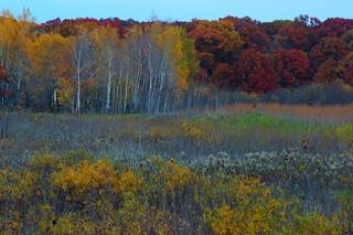 Sherburne NWR in Autumn - Explore