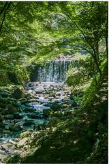 Yoro River (Jean I Cresol) Tags: hdr july 19th 2016 gifu gifuprefecture japan asia water river outdoors yoropark yoro
