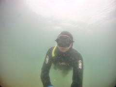 GOPR5907 (ambrogi_taubate) Tags: naturezaselvagem marinha mergulhando ubatuba sp brasil naturezamarinha fantstica apneia 10m setembro primavera 2016