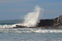 Oh, spirit of the sea.. (Michael C. Hall) Tags: spray splash