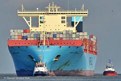 Majestic Maersk (Bernhard Fuchs) Tags: ships containerschiffe frachtschiffe schiffe cargoships boat nikon cargo containerschiff fracht frachtschiff ship vessel water maersk schiff wasser boot bremerhaven weser