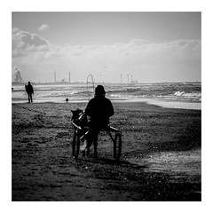 IMGP0009.1 (seba0815) Tags: pentaxk5 50mm sea northholland northsea egmondaanzee beach pony horse urban industry sky clouds sunlight sun light sand monochrome contrast square crop silhouette people walk mood water waterside harbour factory horsecart bw blackwhite blackandwhite blanco nero blanc noir black white schwarzweis seba0815 seaview bokeh blurred