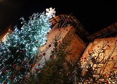 Aspettando il Natale...nel Ricetto di Candelo ( Biella)... (Irma-48) Tags: candelobiellabiellesericettoricetto di candelonatale 2016mercatinimercatini del nataleaddobbiaddobbi natalizinotturnonottenuitnightalberoalbero nataleabete