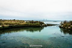 DSC00200 (grahedphotography) Tags: resundsbron resund oresund sweden swe denmark a7ii a7mk2 nature natur water ocean hav bridge beach blackandwhite grey malm limhamn