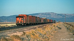 An ASEUM and an EUASM at Moran - 3 of 4 (C.P. Kirkie) Tags: southernpacific sp spmodocline california nco nevadacaliforniaoregon railroads trains timberindustry lassencounty moran ssw cottonbelt caboose sagebrush
