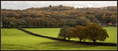 Autumn (Rob-33) Tags: pentaxk3 tamron2875mmf28 landscape trees woodland chaddesleywoods worcestershire
