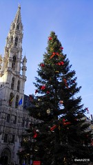 Christmas in Brussels (wwilliamm) Tags: christmas xmas 2016 brussel bruselas bruxelles brussels