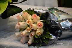 Flowers (g_athens [swaping]) Tags: flowers display λουλούδια τριαντάφυλλα βιτρίνα