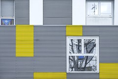 En gris et jaune..... (Isabelle Gallay) Tags: architecture urban urbain city ville colors yellow couleurs jaune reflet reflection aquitaine gironde talence fuji fujifilm street streetphotography tree trees fujixt1 building immeuble