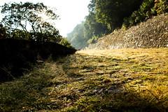 Teotenango, Sol Oculto (alanmartínez) Tags: sun sunrise amanecer sol trees camino way architecture arquitectura grass rocío dew canon nature naturaleza lught luz airelibre otoño autumn