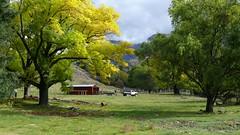 Clean Up (Tones Corner) Tags: autumn newzealand rural marlborough redshed nzscene ruralnz nzscenery nzscenic nzrural