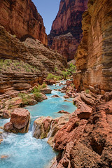 "Hikers crossing Havasu Creek, Grand Canyon (IronRodArt - Royce Bair (""Star Shooter"")) Tags: blue water creek hiking turquoise grandcanyon canyon havasu hikers wilderness grandcanyonnationalpark havasucanyon havasucreek"