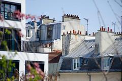 Sur la coule verte (Bee.girl) Tags: paris france roofs 75012 promenadeplante toits couleverte 2013