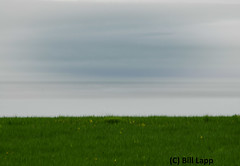horizons (Number Six (bill lapp)) Tags: horizon bayoffundy nbphoto