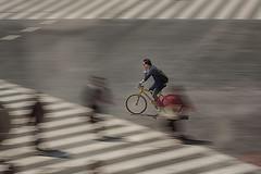 the unrelenting rush~ Tokyo (~mimo~) Tags: street man motion blur lines bike bicycle japan speed photography tokyo asia crossing zebra pedestrians panning mimokhair theunrelentingrush