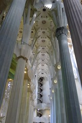 Sagrada Familia (mummy monkey) Tags: barcelona church architecture spain cathedral gaudi sagradafamilia sacredfamily gaudibarcelona barcelonaarchitecture