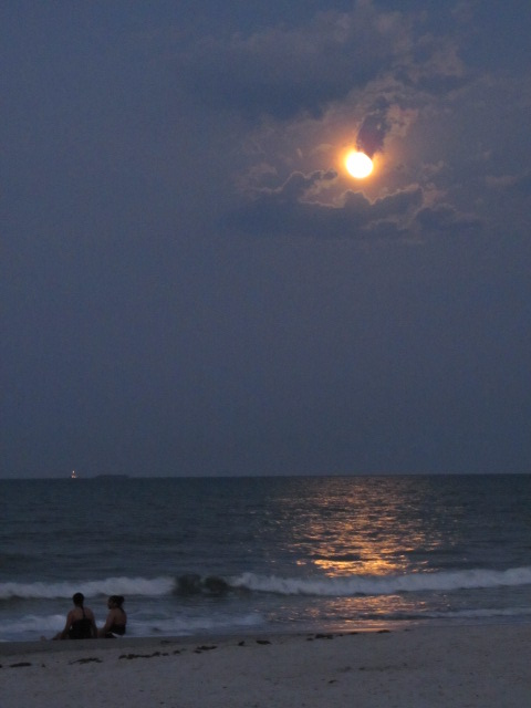 Photo Gallery Cocoabeach Com Cocoa Beach Florida Family Vacation Guide Cocoa Beach Hotels
