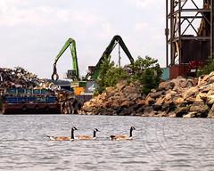 Scrap Metal Recycling, Jersey City, New Jersey (jag9889) Tags: plant metal newjersey jerseycity nj kayaking processing hudsonriver recycling scrap hudsoncounty 2013 jag9889