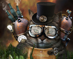 Steampunk Harry (Cat Girl 007) Tags: cat feline harry manipulation timepiece fantasy photograph tophat imagination potrait cogs futuristic whimsical oldfashioned steampunk gearwheels mechanicalparts magicunicornverybest