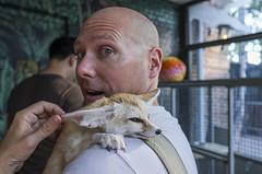 Baby Fox On My Shoulder (bhop) Tags: new york city nyc animals island zoo fuji fox fujifilm staten x100