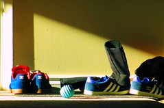 Front Porch.(51/52) (basic_program) Tags: blue sunlight fall yellow canon newfoundland ball dc shoes shadows bright sneakers adidas 2013