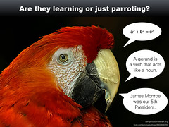 parrot quotes learning teaching slides questioning mcleod snippets