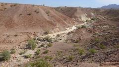 P4022947.jpg (DrPKHouse) Tags: arizona unitedstates loco fault fieldphoto bouse cibola fieldproject geologicfeature mapunit