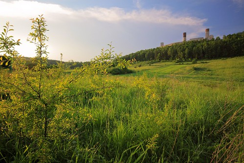 Zamek w Chęcinach / Chęciny Castle