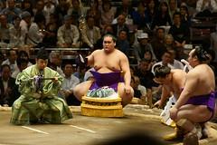 日馬富士 画像25