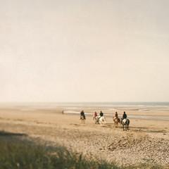 The oath (Sator Arepo) Tags: horses beach canon 5d omaha 24mm normandy tse riders markii tiltshift