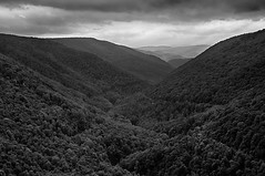 Blackwater Canyon (Timberography) Tags: statepark bw mountains nature monochrome blackwhite wv westvirginia nik blackwater hdr lanscape 3ihdr