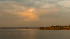 golden hour (Alta Alteo) Tags: chiemsee see lake bayern bavaria chiemgau delta tiroler ache wasser bayrischesmeer