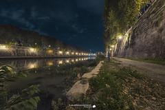 Tevere (Francesco Grisolia) Tags: tevere tiber roma rome lights luci notte night fiume nikon d750 campomarzio lazio italia italy foto photo flickr 2016