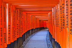 Kyoto Culture (briantang0703) Tags: japan kyoto culture red art column test text road shape routing osaka pattern long exposure