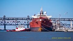 220 ALPINE ETERNITY LR (bradleybennett) Tags: cargo vessel ship shipping delta water river ocean tanker antioch alpine eternity martinez oil benicia