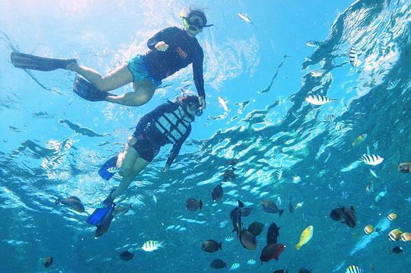 エコツアー!レンボンガン島 マングローブ&シュノーケリング(海の生き物に出会えるオプショナルツアー)