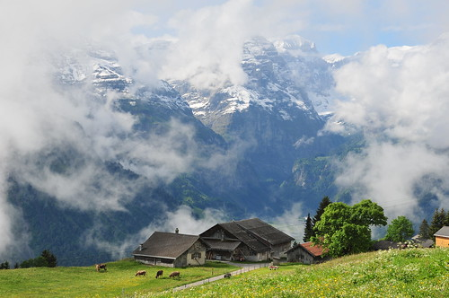 Near Braunwald(1)