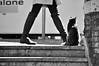 Vagabund (Pau Pumarola) Tags: vagabund vagabundo tramp gat gato vagabond landstreicher penner chat cat katze alone fotografiadecarrer fotografiacallejera photographiederue strasenfotografie candid natural streetphotography